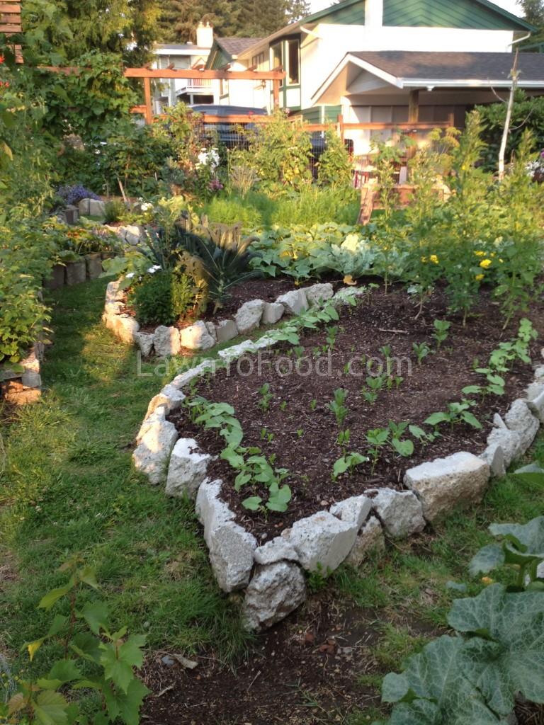 garden tour 9