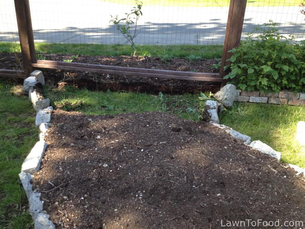 4 tomato plot